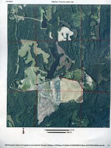 aerial Shepherd 134 Bullock Co027